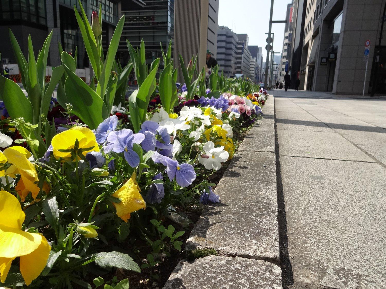 http://www.karimoku.co.jp/blog/domani-nihonbashi/DSC05861.JPG