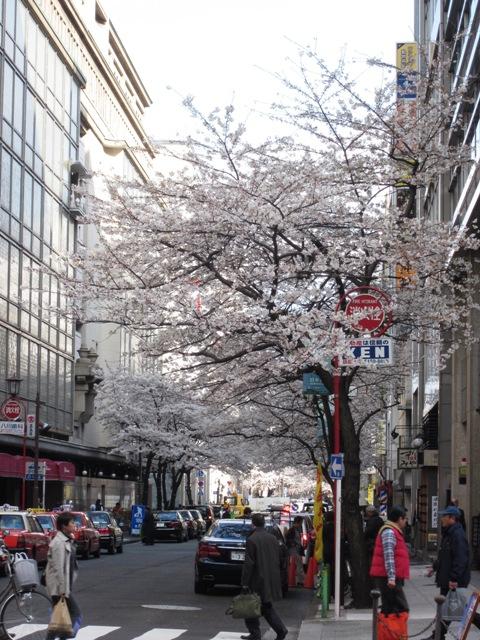 http://www.karimoku.co.jp/blog/domani-nihonbashi/IMG_0277.JPG