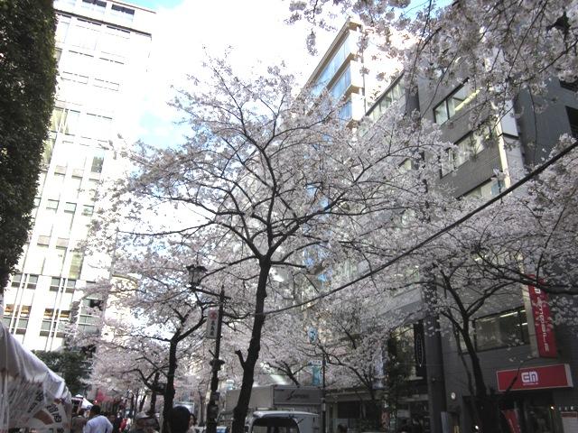 http://www.karimoku.co.jp/blog/domani-nihonbashi/IMG_0285.JPG