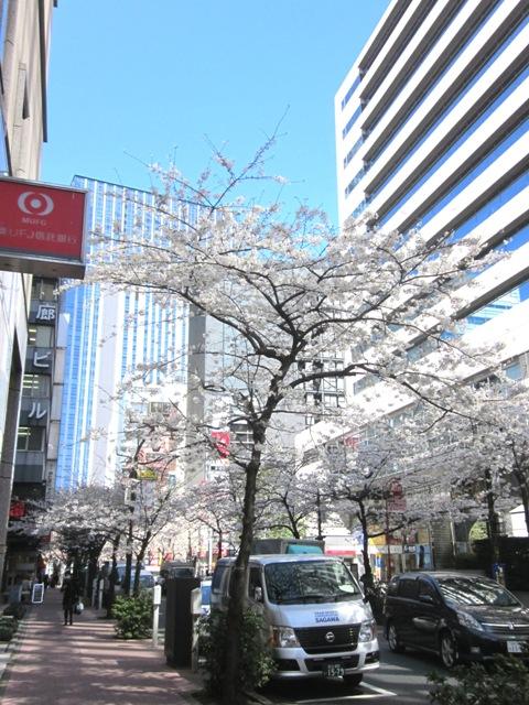 http://www.karimoku.co.jp/blog/domani-nihonbashi/IMG_2087.JPG