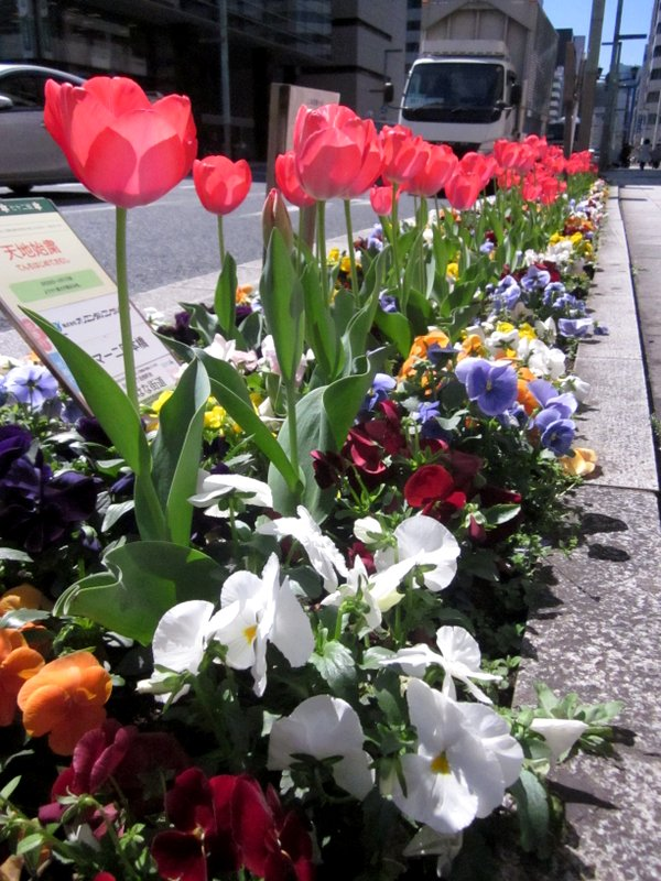 http://www.karimoku.co.jp/blog/domani-nihonbashi/IMG_3568-001.JPG