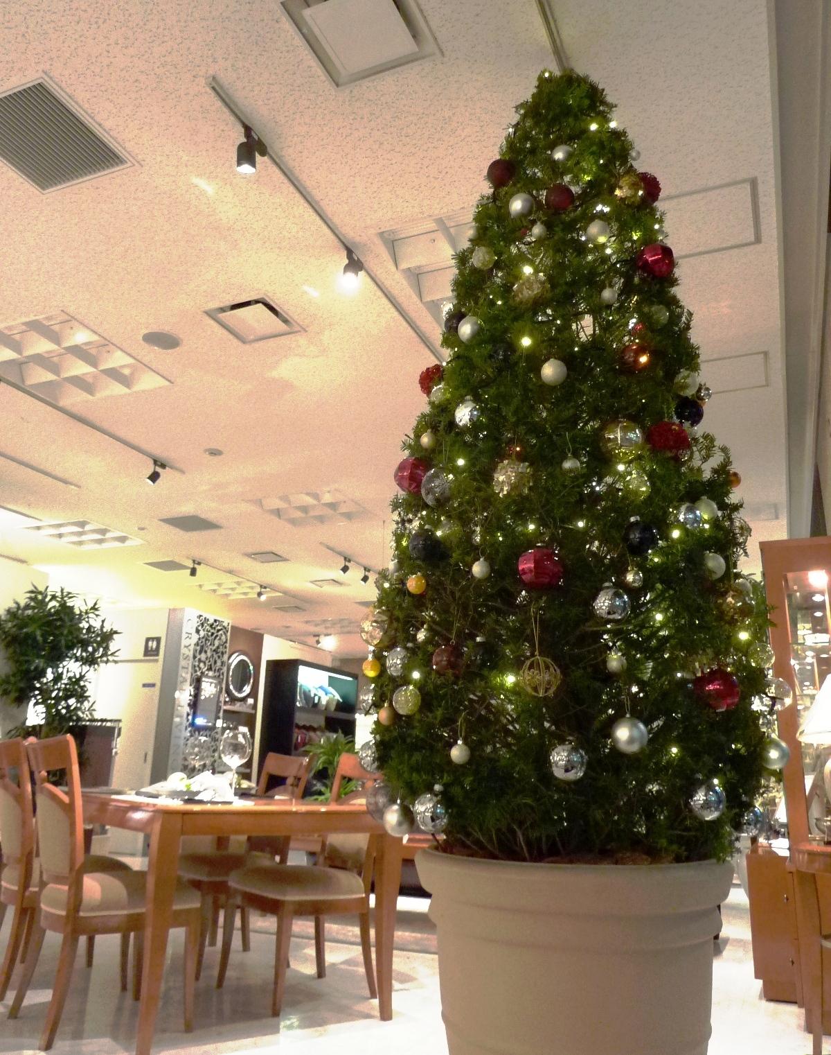 http://www.karimoku.co.jp/blog/domani-nihonbashi/P1000387.JPG