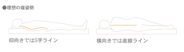 理想の寝姿勢,仰向きではS字ライン,横向きでは直線ライン